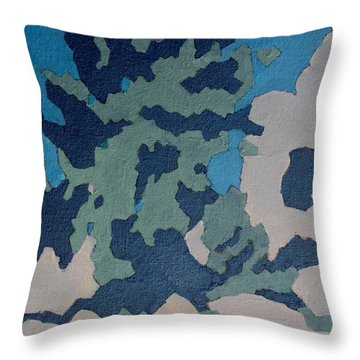 Hidden Valley Abstraction Throw Pillow