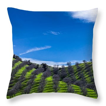 Hidden Valley Hills Throw Pillow