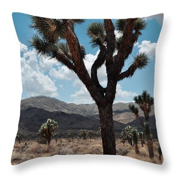 Hidden Valley Joshua Tree Portrait Throw Pillow