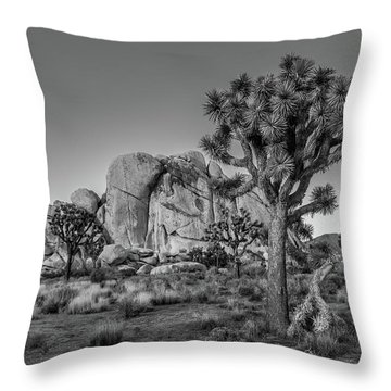 Hidden Valley Rock Throw Pillow