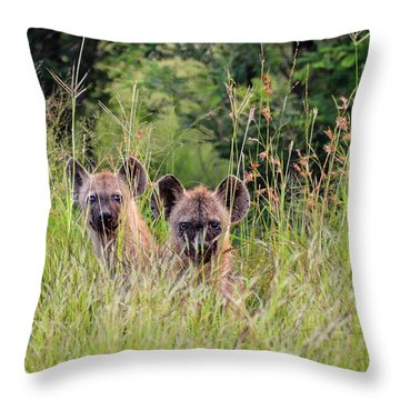 Hide-n-seek Hyenas Throw Pillow