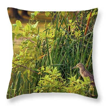 Hiden Throw Pillow