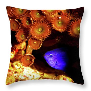 Throw Pillow featuring the photograph Hiding Damsel by Anthony Jones