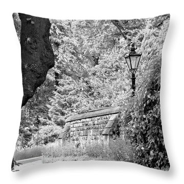 Hiding In Black And White. Throw Pillow