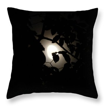 Throw Pillow featuring the photograph Hiding - Leaves Over Moon by Menega Sabidussi