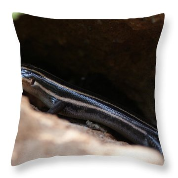 Hiding Out Throw Pillow by Shelley Jones