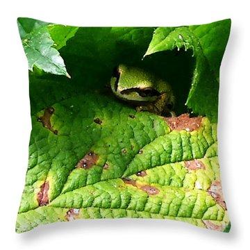 Hiding Tree Frog Throw Pillow