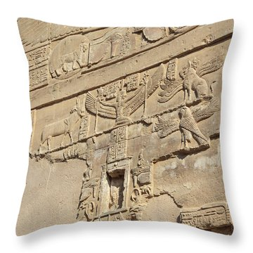 Throw Pillow featuring the photograph Hieroglyphic by Silvia Bruno