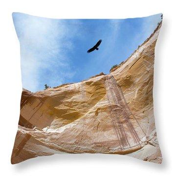 High Above Echo Amphitheater Throw Pillow