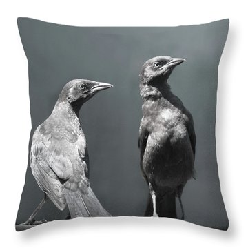 Blackbird Throw Pillows