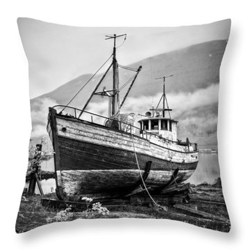 High And Dry Throw Pillow