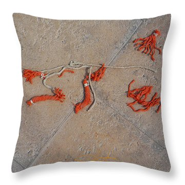 High And Dry Throw Pillow by Charles Stuart