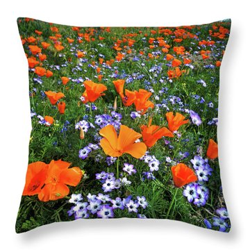 High Desert Wildflowers Throw Pillow
