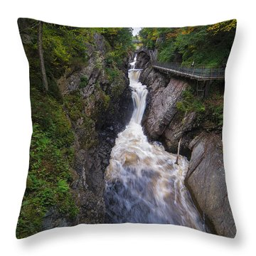 Throw Pillow featuring the photograph High Falls Gorge Adirondacks by Mark Papke
