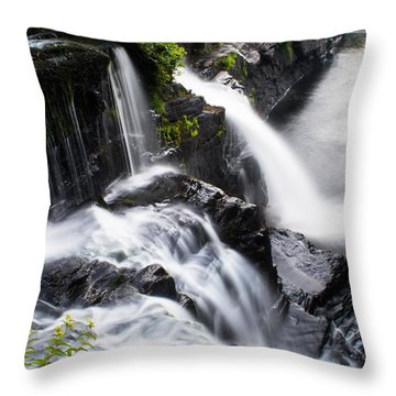 High Falls Park Throw Pillow