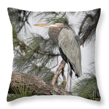 High In The Pine Throw Pillow