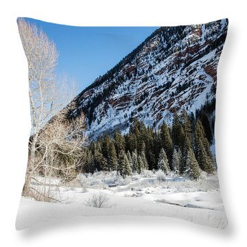 High In The Rockies Before Independence Pass Throw Pillow