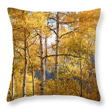 High Mountain Aspens Throw Pillow by The Forests Edge Photography - Diane Sandoval