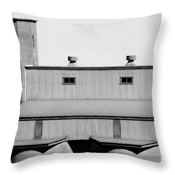 Throw Pillow featuring the photograph High Rise by Stephen Mitchell