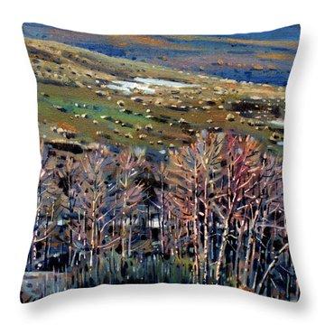 High Sierra Throw Pillow by Donald Maier