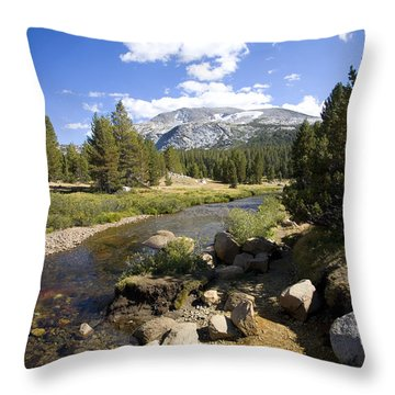 High Sierras Stream Throw Pillow