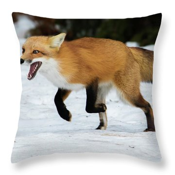 High Speed Fox Throw Pillow