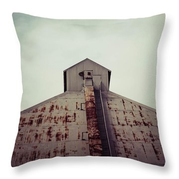 Throw Pillow featuring the photograph High View by Trish Mistric
