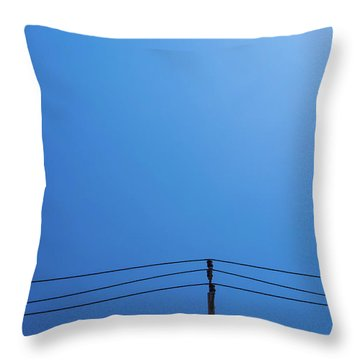 High Voltage Power, Electric Pose Throw Pillow