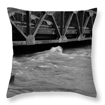High Water Throw Pillow