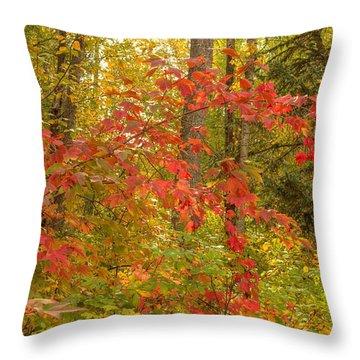 Throw Pillow featuring the photograph Highbush Cranberry by Jim Sauchyn