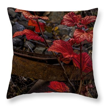 Highbush Cranberry Leaves Throw Pillow