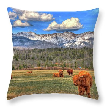 Highland Colorado Throw Pillow by Scott Mahon