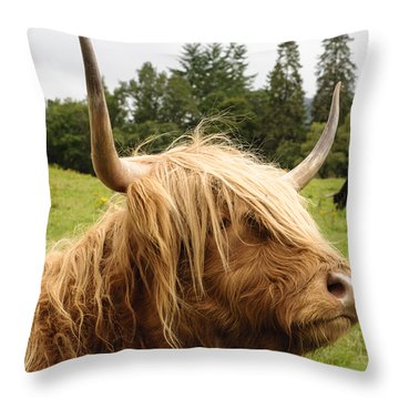 Throw Pillow featuring the photograph Highland Coo by Christi Kraft