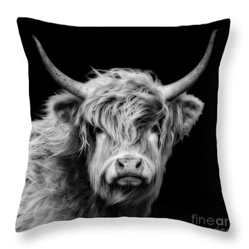 Highland Coo Throw Pillow by Linsey Williams