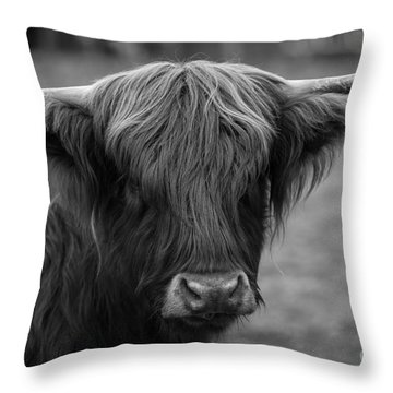 Highland Cow, 2015 - Farm Animal In Black And White Throw Pillow
