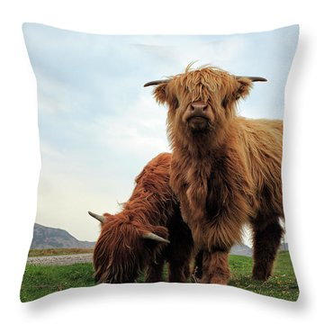 Highland Cow Calves Throw Pillow