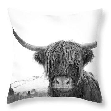 Scotland Throw Pillows