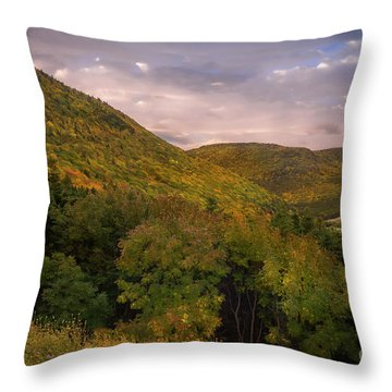 Highland Road Throw Pillow