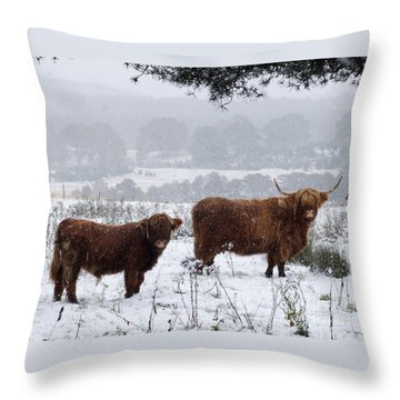 Highlanders In Snow Throw Pillow