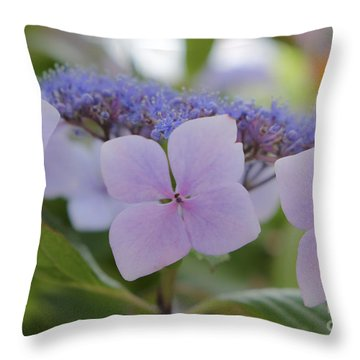 Highlands Hydrangea Throw Pillow