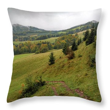 Highlands Landscape In Pieniny Throw Pillow