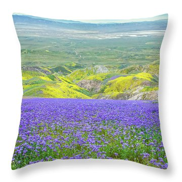 Hike To The Top Of Temblor Range Throw Pillow