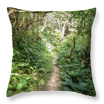 Hiking Path In The Atlantic Forest Throw Pillow