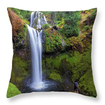 Hiking To Falls Creek Falls Throw Pillow by David Gn