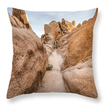 Hiking Trail In Joshua Tree National Park Throw Pillow by Joe Belanger
