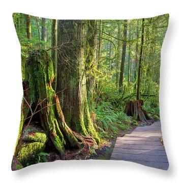 Hiking Trail Through Forest In Lynn Canyon Park Throw Pillow