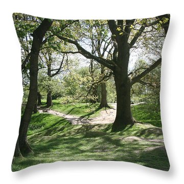 Hill 60 Cratered Landscape Throw Pillow by Travel Pics