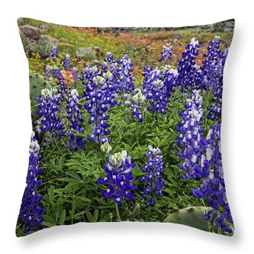 Hill Country Palette Throw Pillow