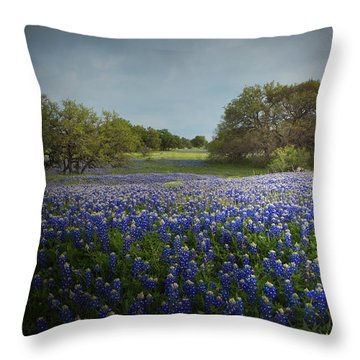 Hill Country Ranch Throw Pillow