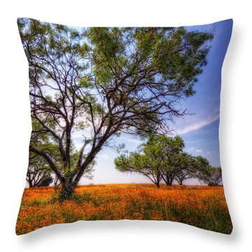 Hill Country Spring Throw Pillow